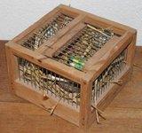Oud brocante vierkant houten vogelkooitje _