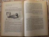Vintage brocante leerboek Levensvreugde plant- en dierkunde 1947_