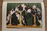 Vintage verzamelplaatjes album De bonte droom van het circus jr '50_