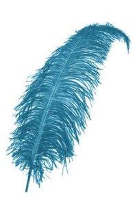 Brocante turquoise blauwe struisvogelveren 60 cm groot