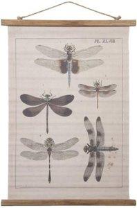 Brocante schoolplaat wandkaart libellen 54x2x75 cm